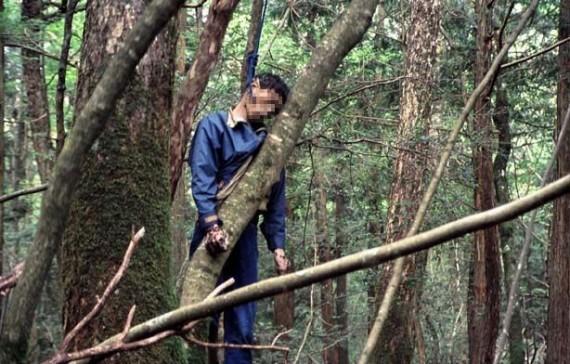 "Японский парк самоуйбийц - кому-то ""повезло"" проскочить охрану"